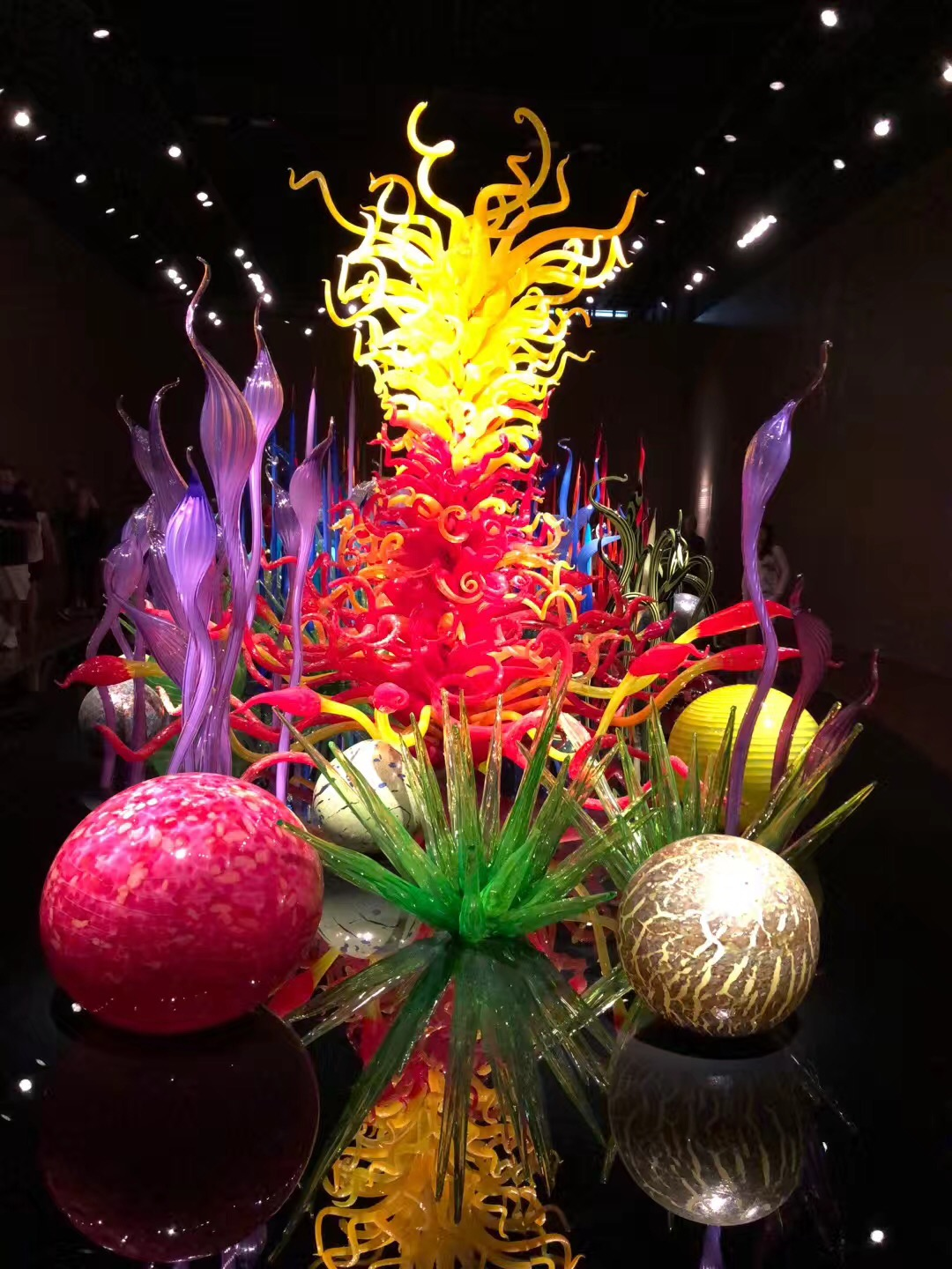 Chihuly Garden and Glass5