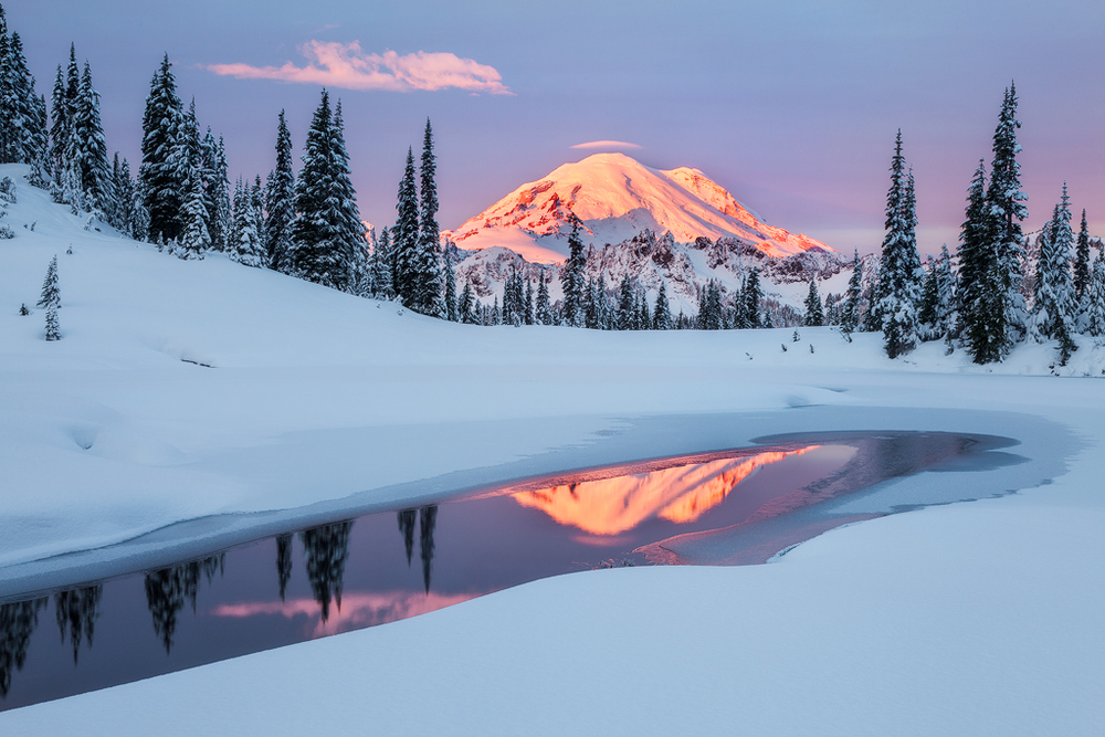 Rainier Winter Reflection