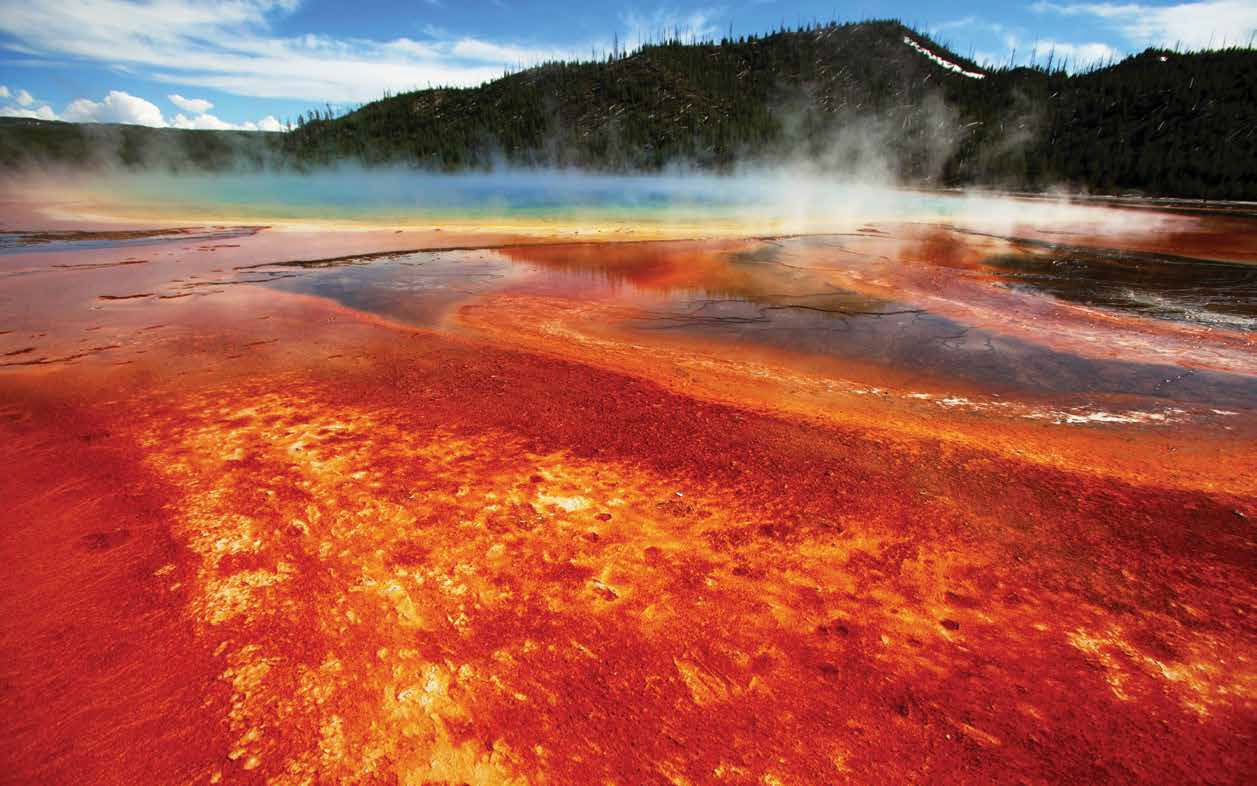 Yellowstone_red