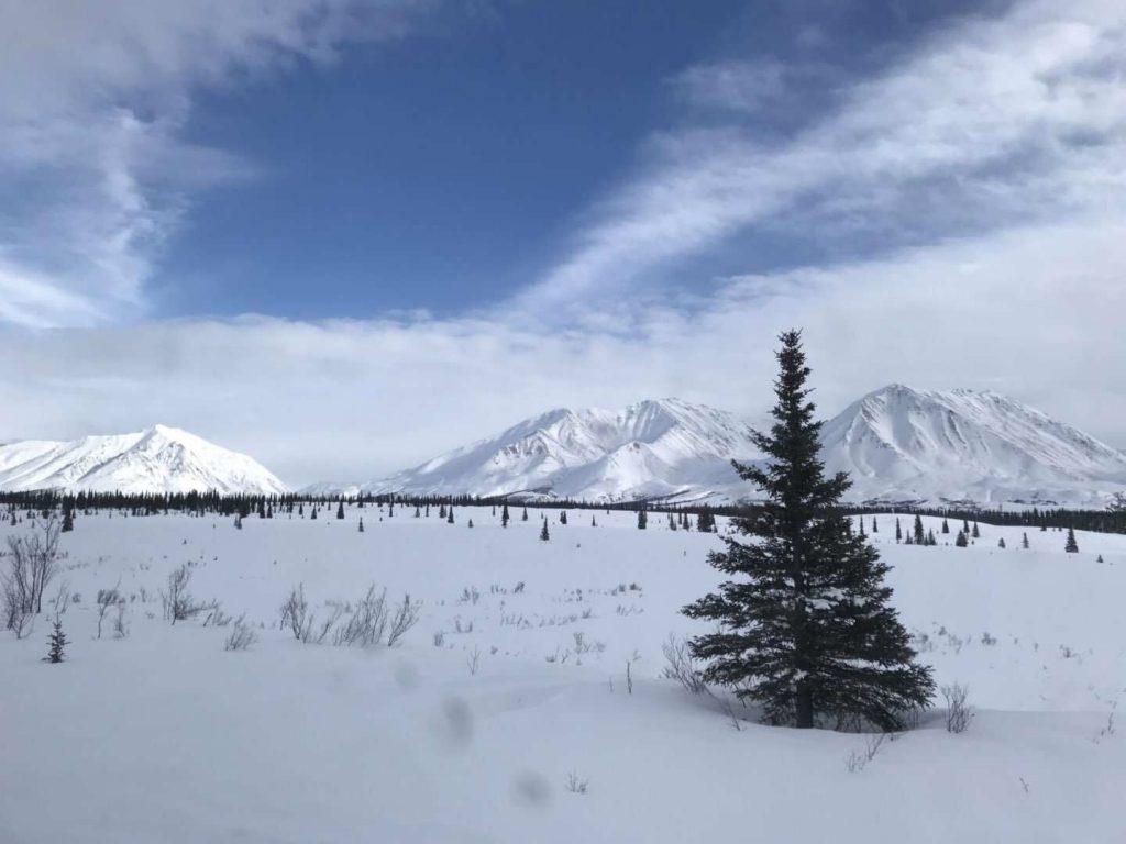 Alaska in March_11