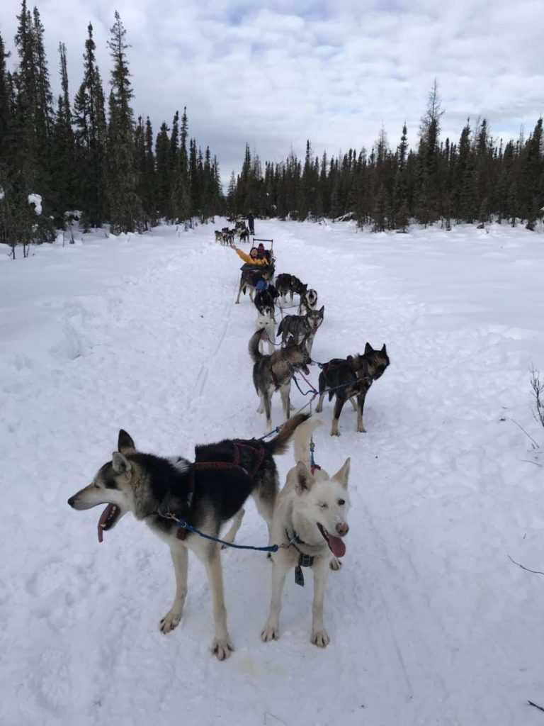 Alaska in March_16