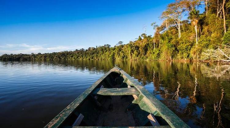 Peru_rainforest