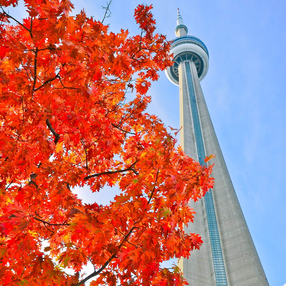 Canada Toronto in Autumn