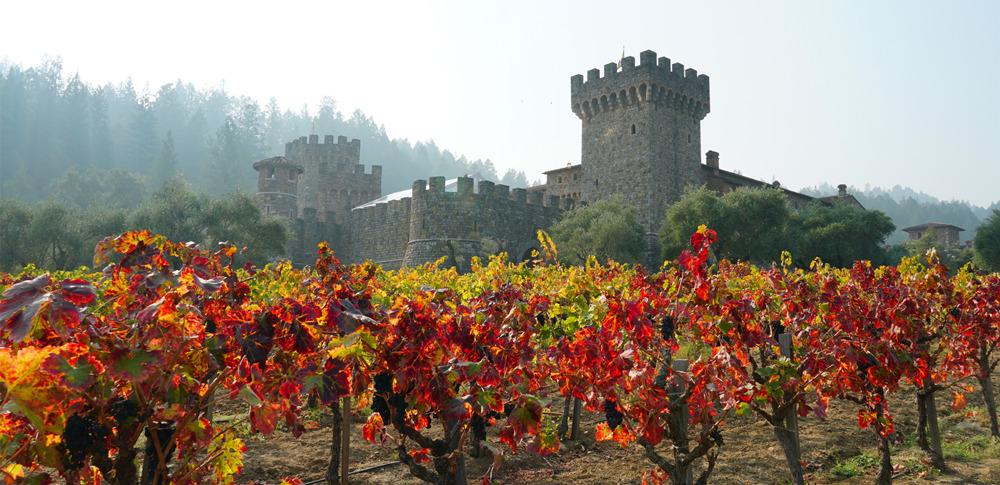 Castello di Amorosa_fall color