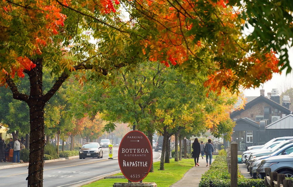 Yountville in fall