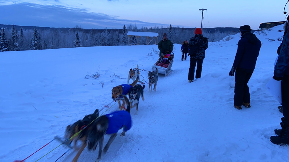 Fairbanks-Dog-Sledding-Tour