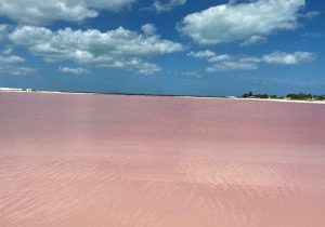 Las-Coloradas-Pink-Lake-Cancun